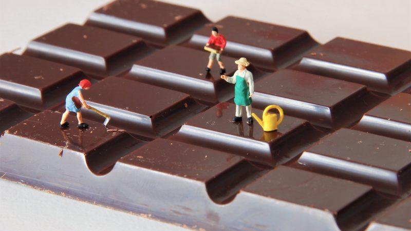 Craft Chocolate: Bean to Bar